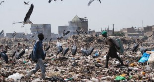The Dandora dumpsite receives more than 3.5 tonnes of garbage from across the city every day. Photo courtesy of www.businessdailyafrica.com
